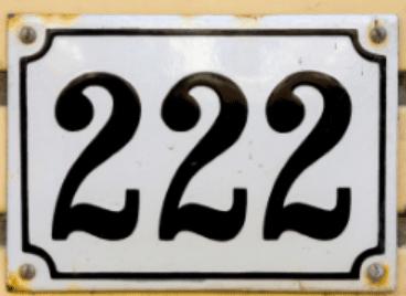 twin flames 222