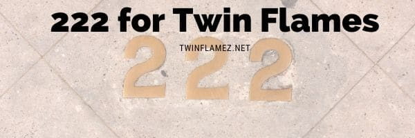 222 Twin Flame Angel Number